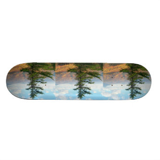 Skateboards made with photography 5
