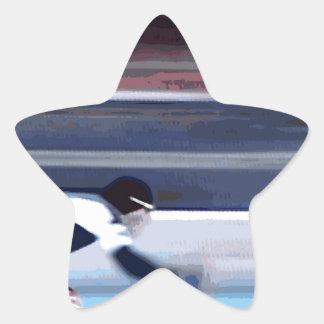 Skater 2 star sticker