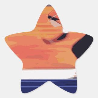 Skater Star Sticker