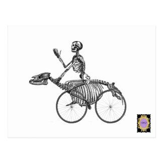Skelebike rider post card