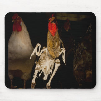 Skeletal Chicken Mouse Pad