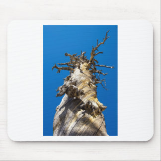 Skeletal Tree with Blue Sky Mouse Pad