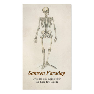 skeleton anatomy  business card