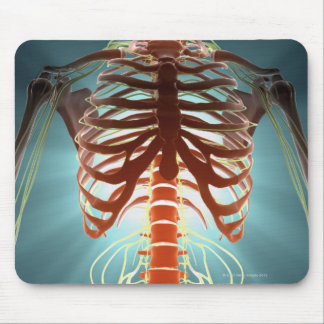 Skeleton and Nerves Mouse Pad