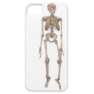Skeleton iPhone 5 Covers