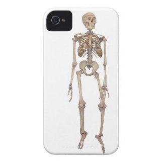 Skeleton iPhone 4 Cover