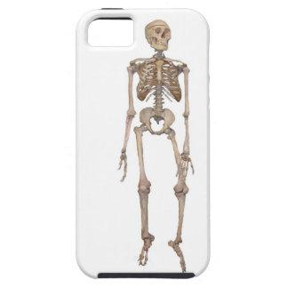 Skeleton iPhone 5 Cases