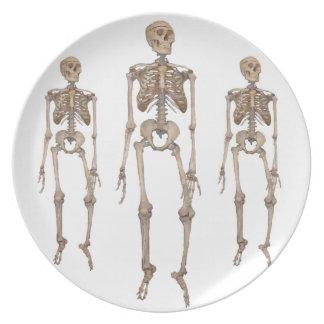 Skeleton Dinner Plates