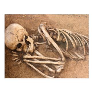 Skeleton Dirt Nap Postcard