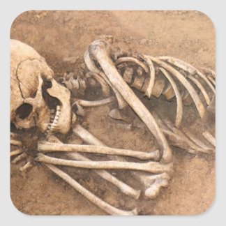 Skeleton Dirt Nap Square Sticker