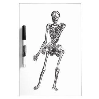 Skeleton Dry-Erase Board