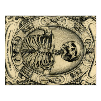 Skeleton, Goth, Medieval Postcard