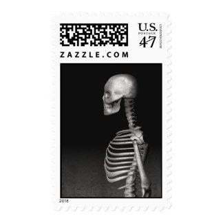 Skeleton - Halloween Stamps