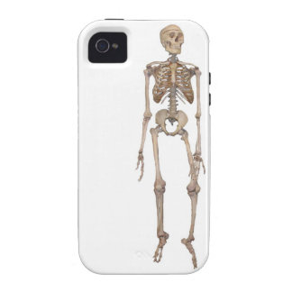Skeleton iPhone 4/4S Vibe Universal Case Case-Mate iPhone 4 Cover