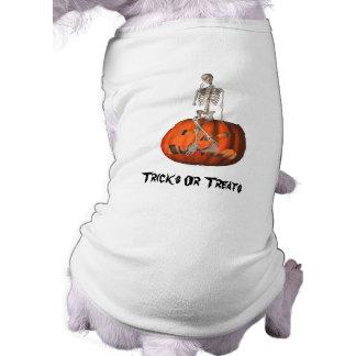 Skeleton Jack O Lantern Halloween Funny Dog Shirt