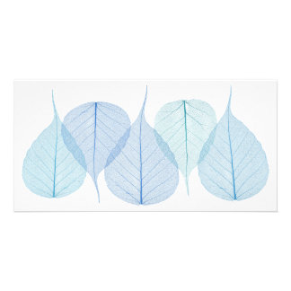 skeleton leaves on white card photo card
