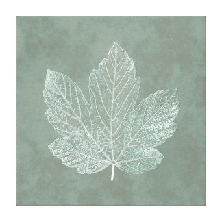 Skeleton Maple Leaf Botanical Canvas Print