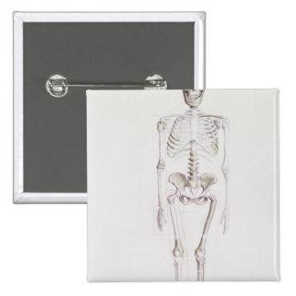 Skeleton of Australopithecus africanus 2 Inch Square Button