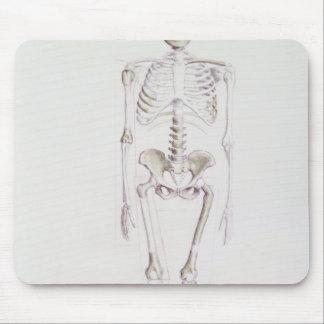 Skeleton of Australopithecus africanus Mouse Pad
