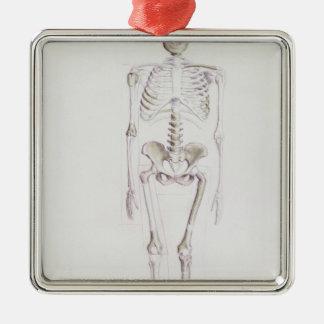 Skeleton of Australopithecus africanus Square Metal Christmas Ornament