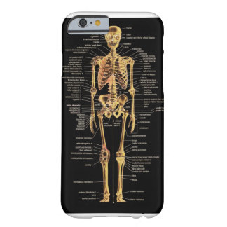 Skeleton phone cover barely there iPhone 6 case