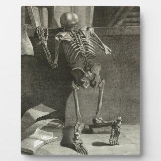 Skeleton Reading Plaque