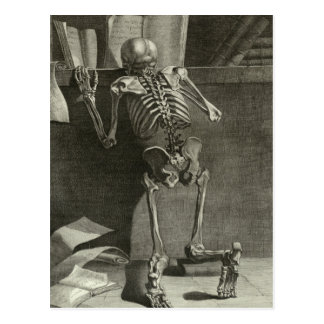 Skeleton Reading Postcard