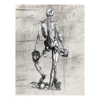 Skeleton Standing on Skull Postcard