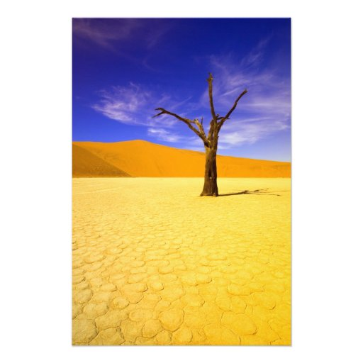 Skeleton trees in Dead Vlei Sossusvlei, Photo Art