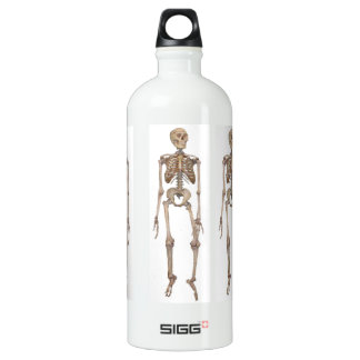 Skeleton Water Bottle