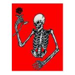 Skeleton With Rose Postcard