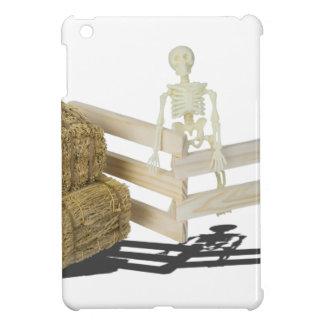 SkeletonBalesOfHayFence062115 iPad Mini Cover