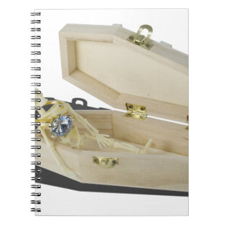 SkeletonEngagementRingCoffin070515 Notebook