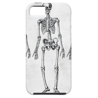 Skeletons Case-Mate Case iPhone 5 Cases