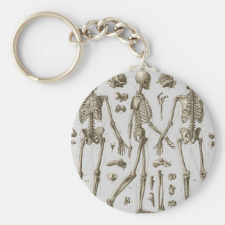 Skeletons from the Brockhaus & Efron Encyclopedia Keychain