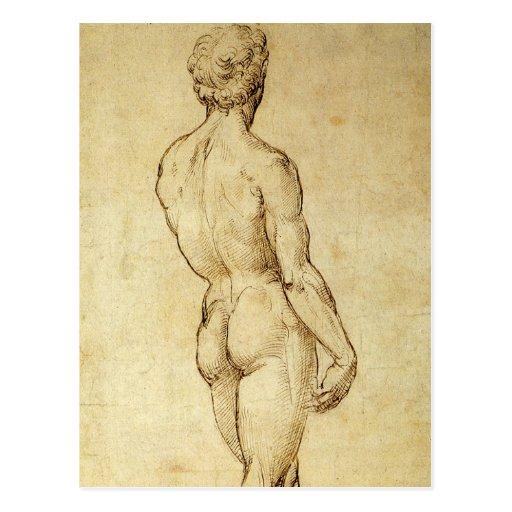 Sketch of Michelangelo's David Statue by Raphael Postcard