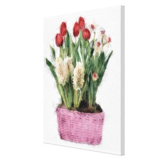 Sketch of Red Tulips & White Hyacinths in Basket Canvas Print