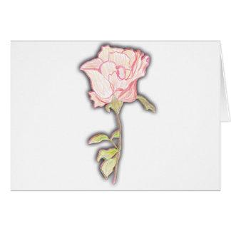 Sketched Rose Card