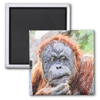 sketchy orang 2 inch square magnet