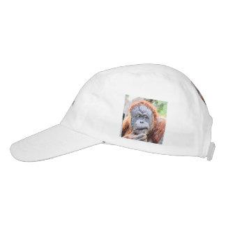 sketchy orang hat
