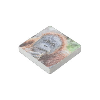 sketchy orang stone magnet