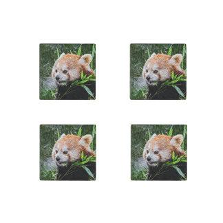 sketchy red panda stone magnet