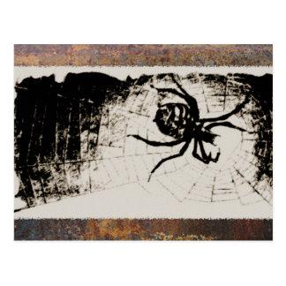 Sketchy Spider Postcard