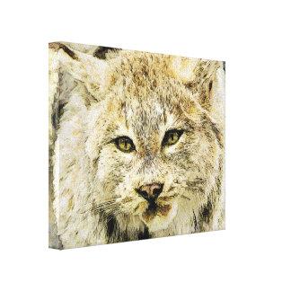 Sketchy Wildcat Canvas Print