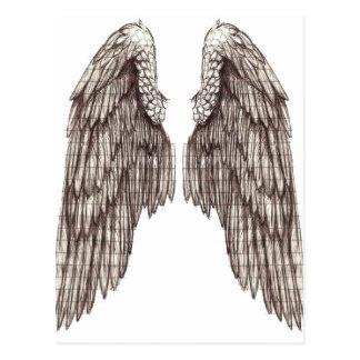 sketchy wings postcard