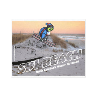 Ski Beach Turtle Canvas Print