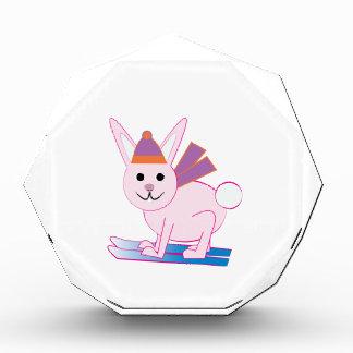 Ski Bunny Awards