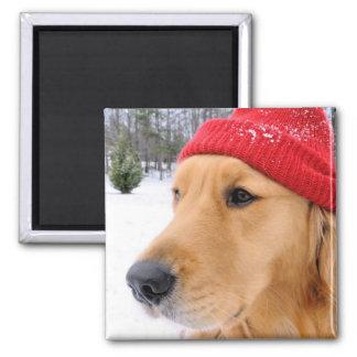 Ski Dog Color 2 Inch Square Magnet