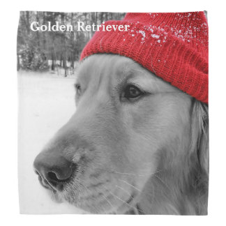 Ski Dog Golden Retriever Bandana