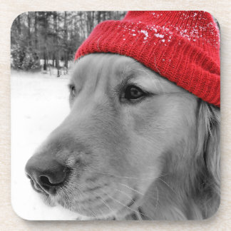 Ski Dog Golden Retriever Beverage Coaster